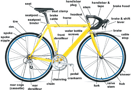 Bicycle anatomy gives the what, where, & why of bicycle components.