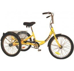 Affordable adult tricycle 350 lb capacity foto 984